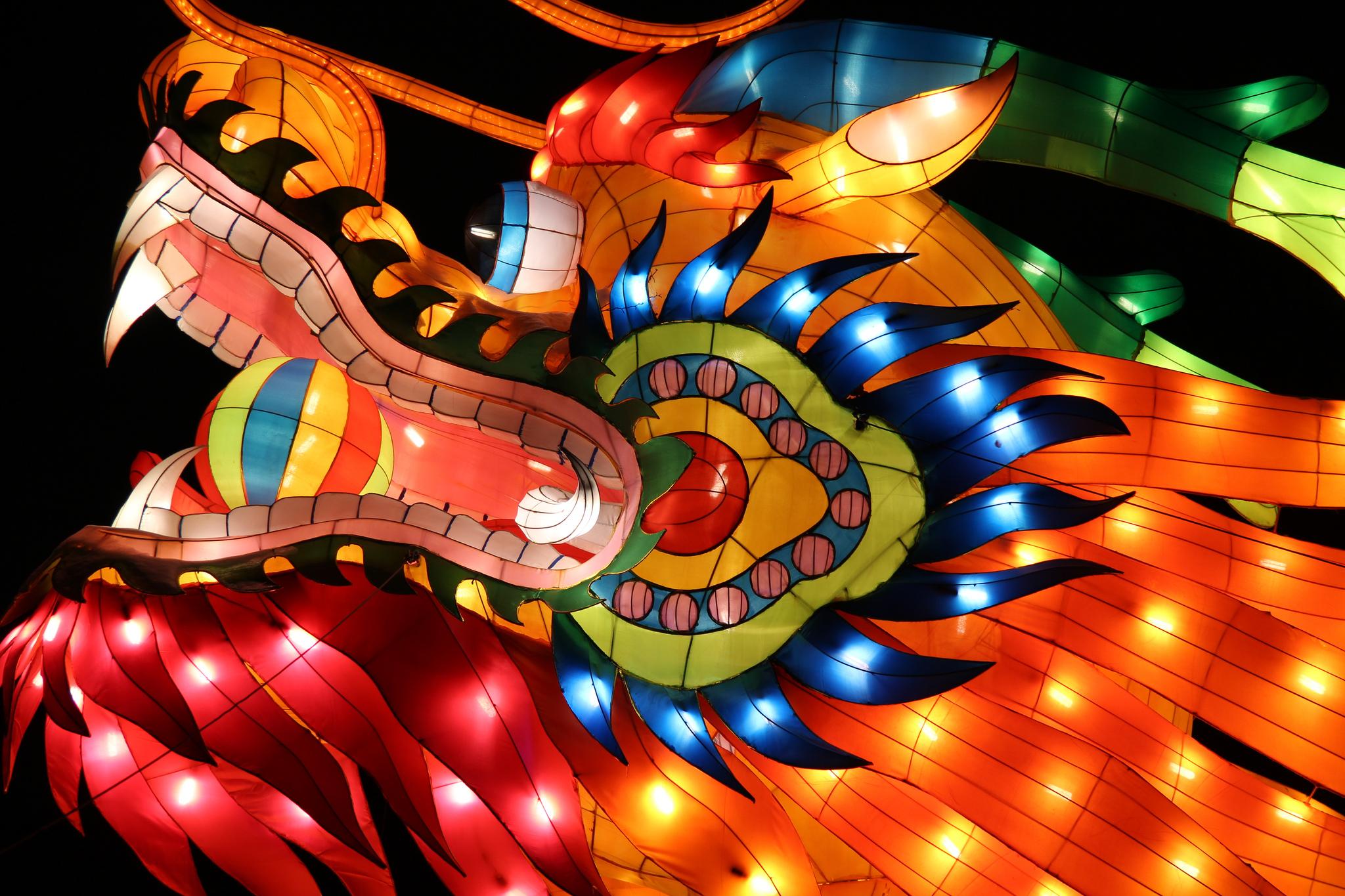 Chinese New Year Logistics